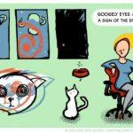 Googely eyes
